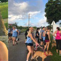 Humane Society Walk & Wag