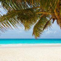 Recently Relocated to Grand Cayman? Here Are Some Things To Do In Your Spare Time