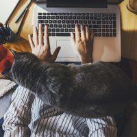 The New Work/Life Balance